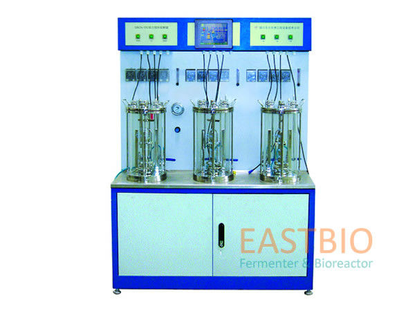 Multiple Autoclavable Bioreactors Magnetic Stirred Glass Fermenter Pt-100 Probe